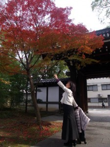 紅葉の季節です。近くの公園にて